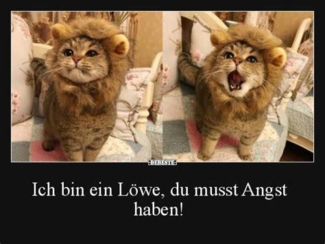 Auch witzige worte für shirts und tattoos haben wir im repertoire. Ich bin ein Löwe, du musst Angst haben! | Lustige Bilder ...
