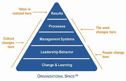 Organizational Change Healthcare Using Data Drive Space