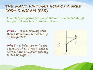 Ppt - Forces And Equilibrium Powerpoint Presentation