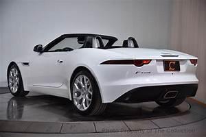 Jaguar F Type Cabriolet : 2018 new jaguar f type convertible automatic 296hp at the collection serving coral gables fl ~ Medecine-chirurgie-esthetiques.com Avis de Voitures