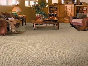 living room carpet choice for your home With carpet for living room designs