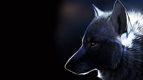 Beautiful Wolf Wallpaper Computer by Wolf Wallpapers Best Wallpapers