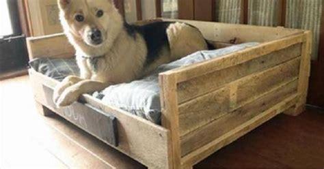 idees de lits pour votre chien fabriques  partir de