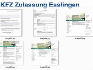 Euro 6 Steuer Berechnen : kfz zulassung n rtingen was ben tige ich rue25 blog ~ Themetempest.com Abrechnung