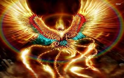 Phoenix Background Fantasy Wallpapersafari Hivewallpapercom