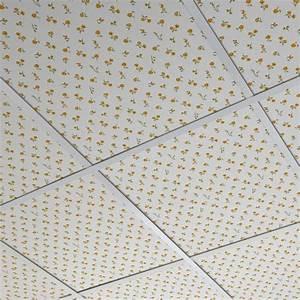 Dalle Plafond Suspendu Brico Depot : cuisine lovely dalles plafond dalles plafond suspendu ~ Melissatoandfro.com Idées de Décoration