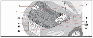 2008 S40 Power Steering Fluid Resivour