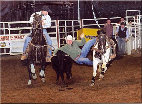 Ross Nevala's PRCA steer wrestling horse, Rockets Rocky ...