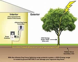 Extreme Dog Fence U00ae Lightning Surge Protector  U2013 Extreme