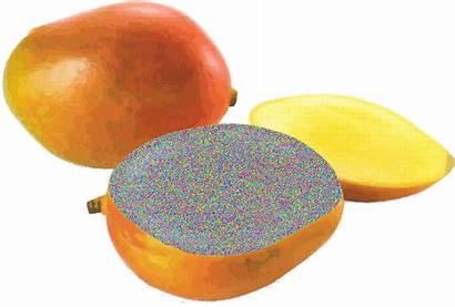 Transparent Fruit Animated Mango Google Overlay 80s