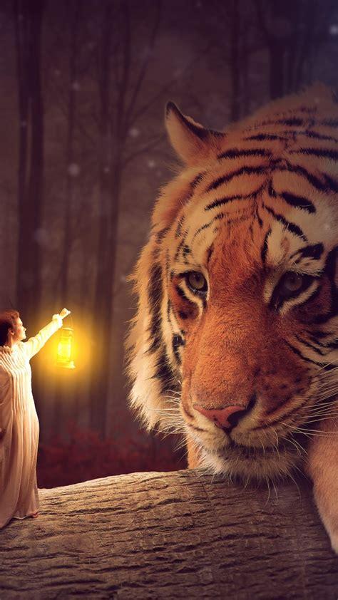 wallpaper big tiger fairy woman lantern  creative