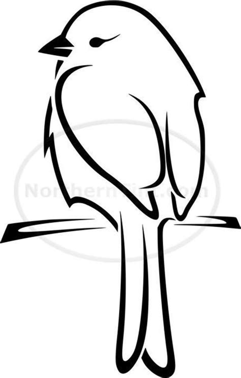 draw  bird step  step easy  pictures birds