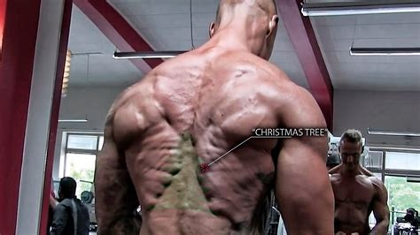 shredded back but what is quot the christmas tree
