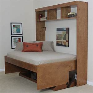 Wallbeds Modern Birch Murphy Bed & Reviews | Wayfair