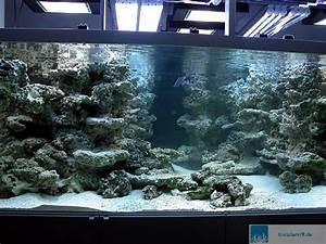 Aquarium Deko Steine : filtersysteme das berliner system ~ Frokenaadalensverden.com Haus und Dekorationen