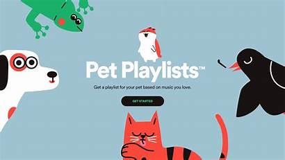 Spotify Pet Behance Words Pets Youthful Dog