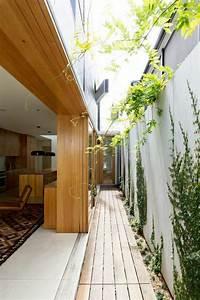 Les Plantes Grimpantes  Beaucoup D U0026 39 Id U00e9es Pour Le Jardin