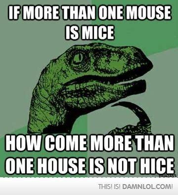 Dino Memes - dinosaur meme on tumblr