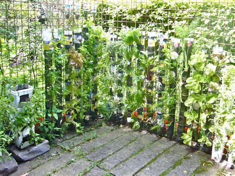 vertical gardening containers huerta vertical de botellas de plastico willem van cotthem desertification