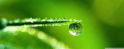 Water Reflection Macro Drop