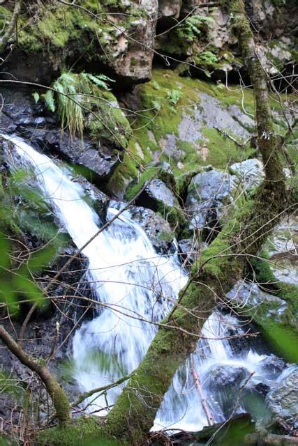 waterfalls await on mt tamalpais cataract trail marin 226 | cataract5