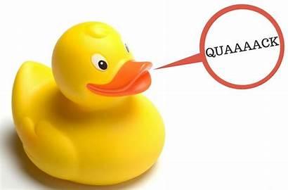 Quack Duck Sound Ducks Sounds Horn Drive