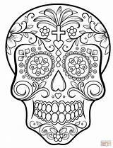 Coloring Skull Sugar Printable Dead sketch template