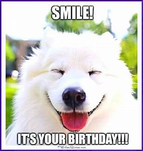 Funny Happy Birthday Meme Animal | www.imgkid.com - The ...