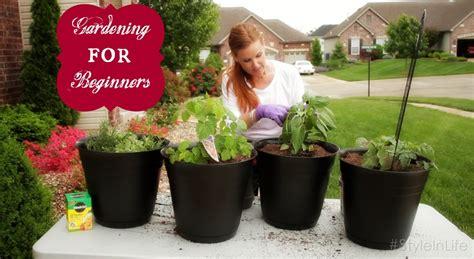 how to plant an easy beginner garden garden trends