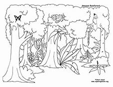 HD wallpapers rainforest insects coloring pages sweet-love-wallpaper ...
