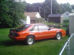 orange429 1981 Ford Mustang Specs, Photos, Modification Info at CarDomain
