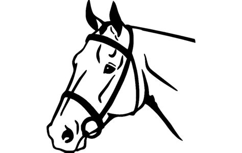 horse face dxf file   axisco