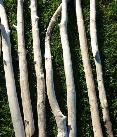 branche de bois flotté branche de bois flott 233 de 50cm 224 90cm de longueur et de