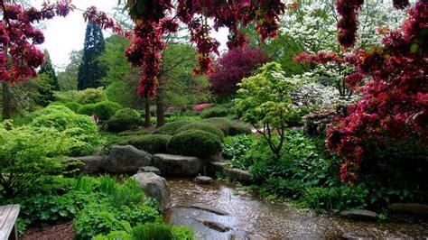 Garden With Stream Moss Stones And Flowers HD Garden ...