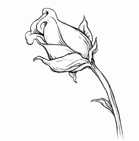 disegni a matita facili occhi disegni matita da copiare bello immagini di disegni a