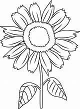 Sunflower Coloring Clip Pretty Line Sweetclipart sketch template