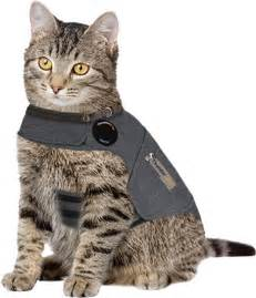 therapy cats for anxiety cat anxiety vest shop cat anxiety treatments thundershirt