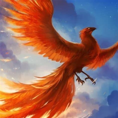 Golden Phoenix - YouTube