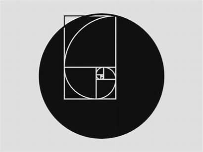 Fibonacci Ratio Golden Sequence Gifs Giphy Test