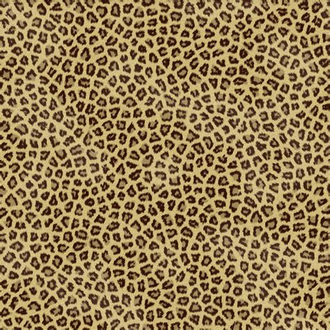 Cheetah Print Desktop Wallpaper Cheetah Desktop Backgrounds Wallpaper Cave