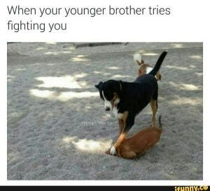 Siblings Fighting Meme - sibling rivalry kappit