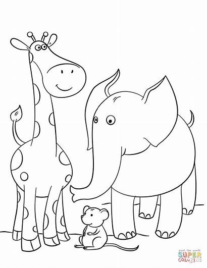Giraffe Coloring Elephant Pages Giraffes Mouse Drawing