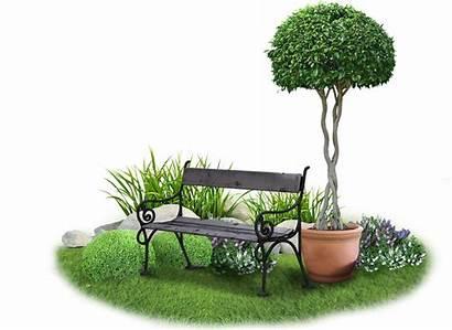 Garden Groen Gardens Outdoor Landscapes Plants Indoor