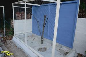 Fabrication D Une Voliere Exterieur : fabriquez une voli re pour vos colombes et tourterelles ~ Premium-room.com Idées de Décoration