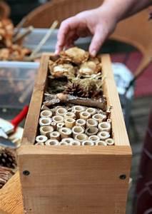 Insektenhotel Selber Bauen Anleitung : 17 best ideas about insektenhotel selber bauen on pinterest insektenhotel selber machen ~ Michelbontemps.com Haus und Dekorationen