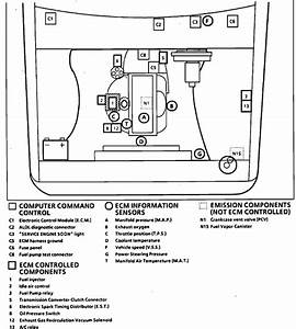 35 Chevy S10 Throttle Body Diagram