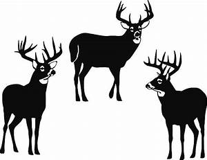 White-tailed Deer clipart, Download White-tailed Deer clipart