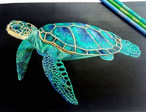 what color are the turtles best 25 sea turtle painting ideas on turtle