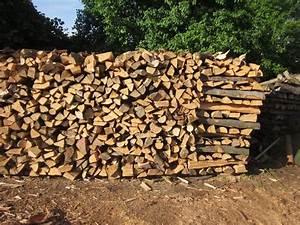 Stammholz Buche Preis : brennholz buche in gerhardshofen holz kaufen und verkaufen ber private kleinanzeigen ~ Orissabook.com Haus und Dekorationen