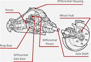 Jeep Cj7 Driveline Diagram